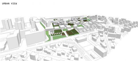 Les conditions d'urbanisme (savoir si le projet de construction est réalisable)