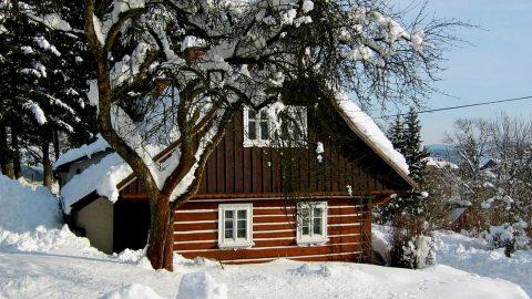Quels avantages d'avoir une maison en bois